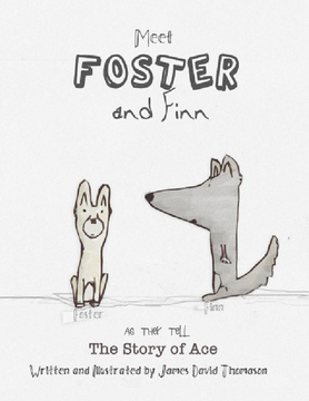 Foster and Finn