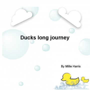 Ducks long journey