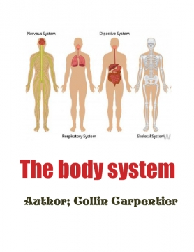 Journey through the body system