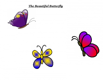 The Beautiful Butterfly