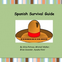 Spanish Survival Guide