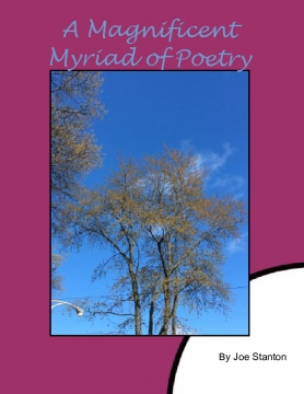 A Magnificent Myriad of Wonderful Works of Poetry