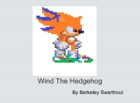 Wind The Hedgehog