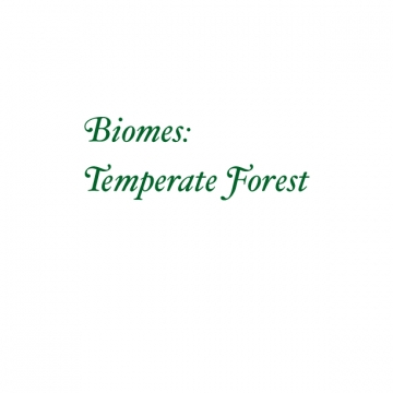 Biomes: Temperate Forest