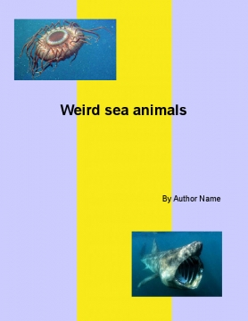 Weird sea animals