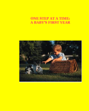 One step at a time: A Baby's First Year