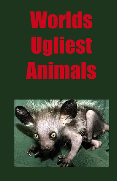 World's Ugliest Animals