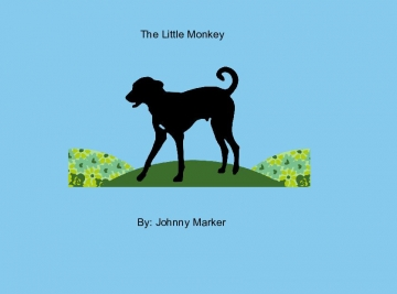 The Little Monkey