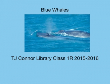 Ble Whales