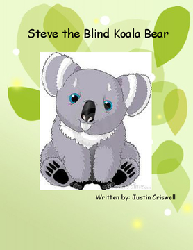 Steve the Blind Koala Bear