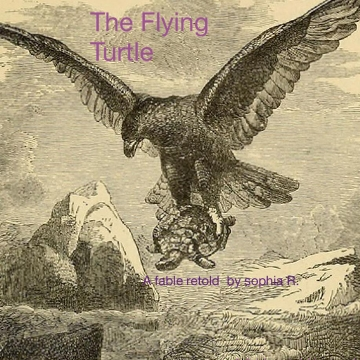 The Flying turtle