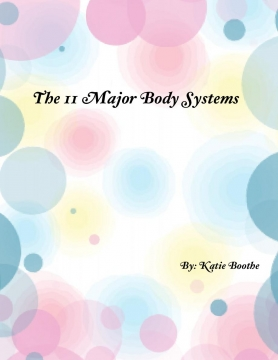The 11 Major Body Systems