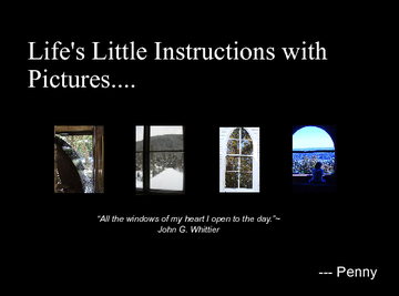 Life's Little Instructions In Pictures