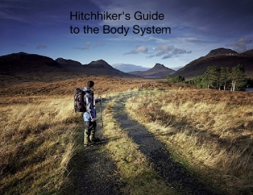 Hitchhiker's guide to the body system