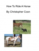 How To Ride A Horse