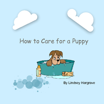 How to Take Care of Your New Puppy