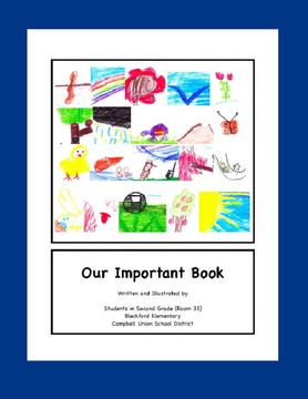 Our Important Book