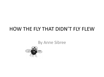 how the fly that didn't fly flew