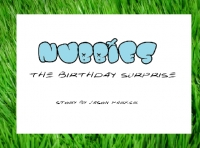 Nubbies: Birthday Surprise