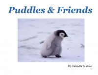 Puddles & Friends