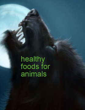 Healthy foods for animals