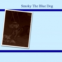 Smoky The Blue Dog