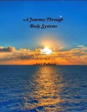 A Journey through Body Systems