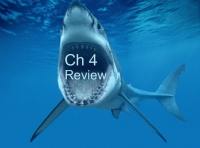 Ch 4 Review