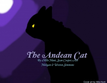 The Andean Cat