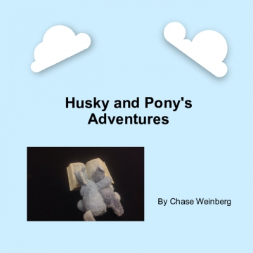 Husky and Pony's Adventures
