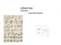 brilliant tips