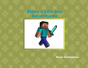 Steve's Life and Adventures