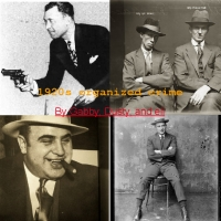 Organized Crime of the '20's