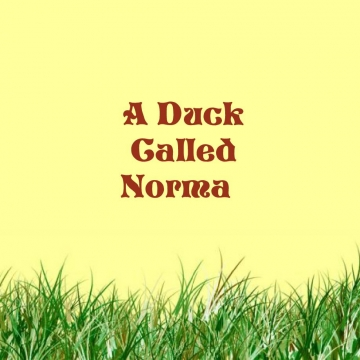 A DUCK CALLED NORMA