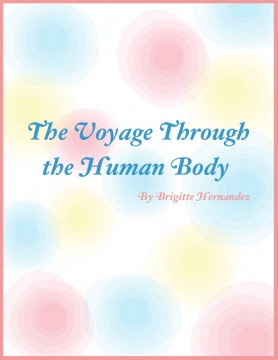 The Voyage Through the Human Body