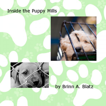 Inside  the Puppy Mills