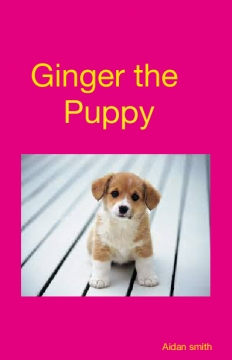 Ginger the puppy