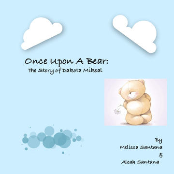 Once Upon A Bear