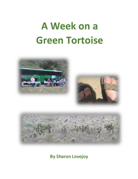 A Week on a Green Tortoise