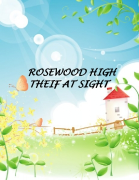rosewood high : theif at sight
