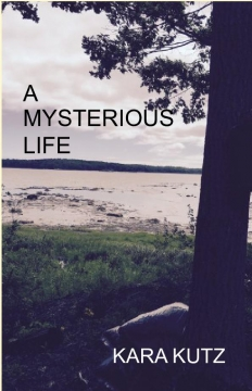 A Mysterious Life