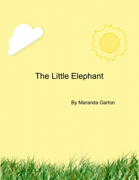 The Little Elephant