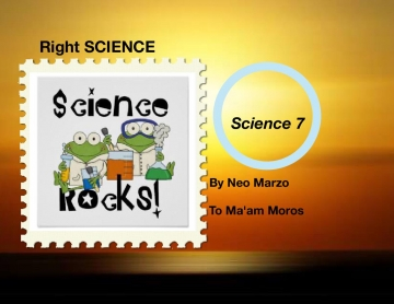 Right SCIENCE