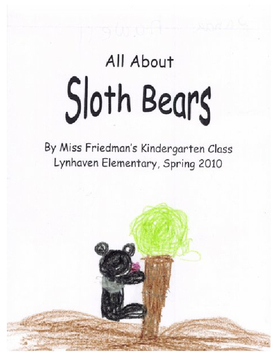 All About Sloth Bears