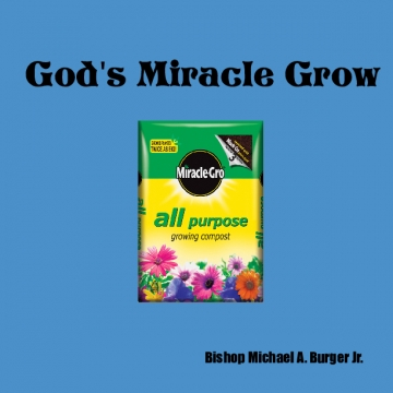 God's Miracle Grow