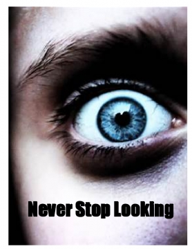 Never Stop Looking