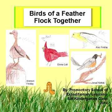 The Kindergarten Alphabirdy book