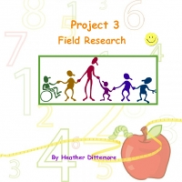 Project 3 - Field Reasearch