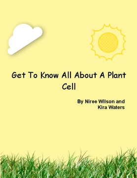Get To Know All About A Plant Cell!