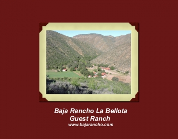 Baja Rancho La Bellota Guest Ranch